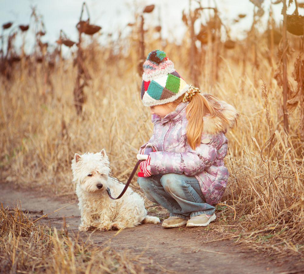 Kinder West-Highland-White-Terrier