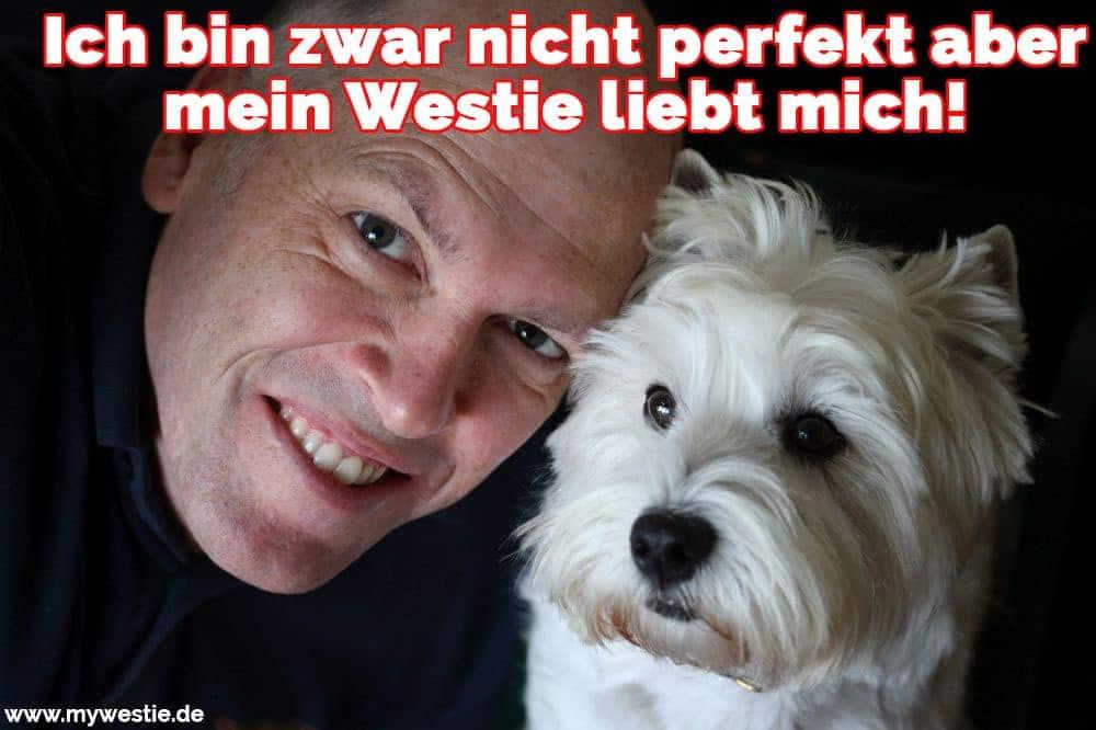 Ein schöner Westie und sein Besitzer
