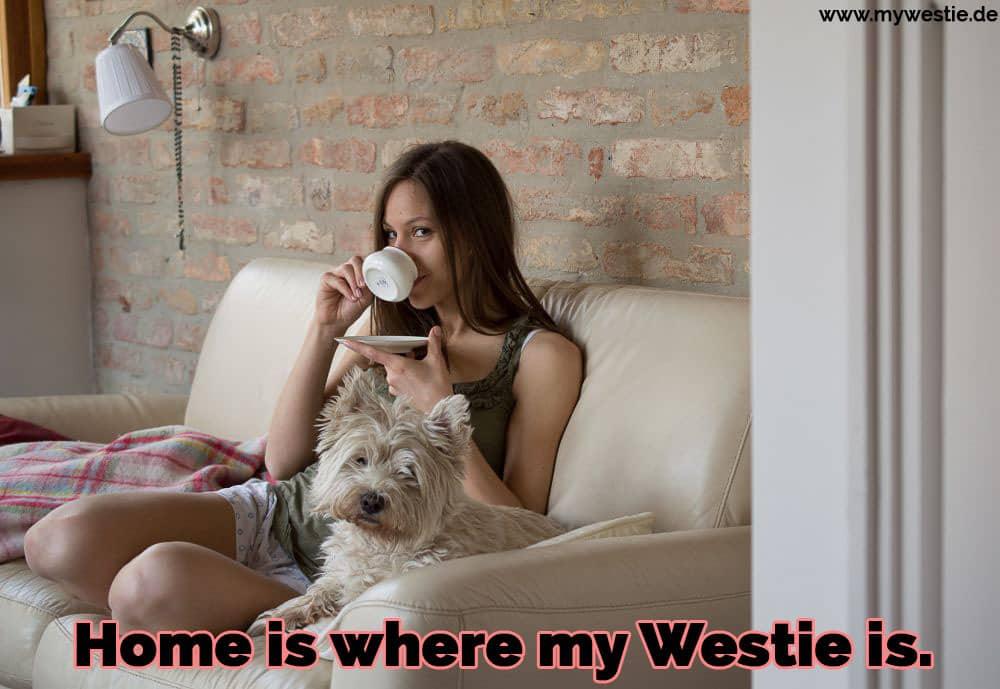 Eine Frau sitzt auf dem Sofa mit ihrem Westie
