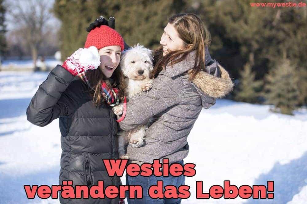 Zwei Frauen spielen mit ihrem Westie im Schnee