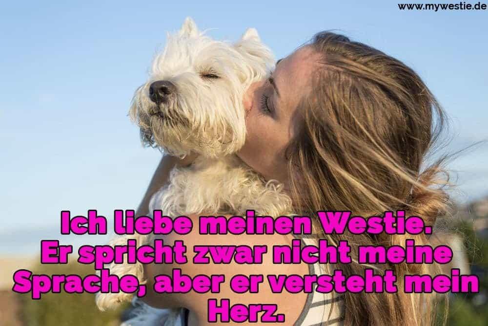Ein Mädchen küsst ihr Westie